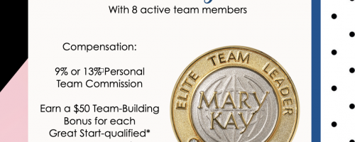 A New Level: Elite Team Leader