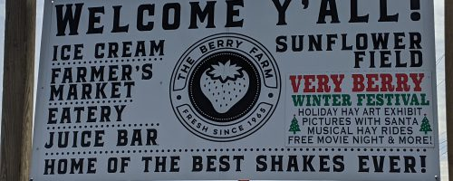 Field Trip to The Berry Farms