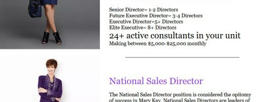Lying About Sales Director Income